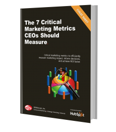 Fractional CMO | Strategy | CEO's Guide to Marketing Metrics | DB Marcom