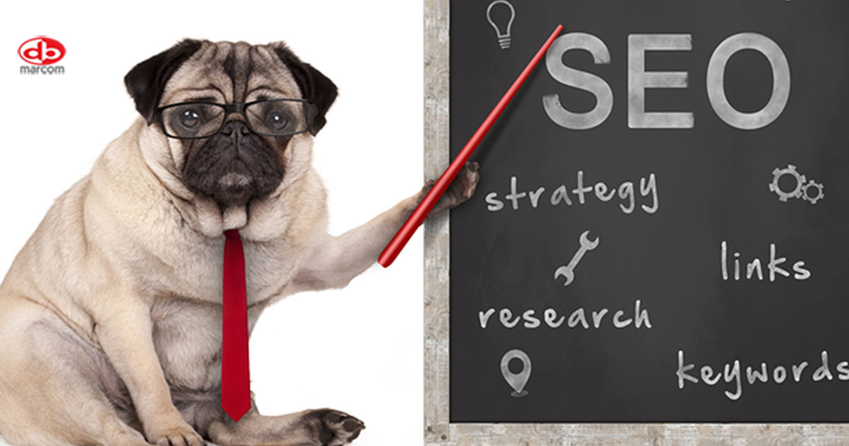 5 Reasons Your SEO Strategy Isn't Driving Results